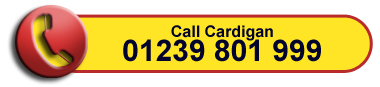 Call E and M Motor Factors Cardigan on 01239 801 999